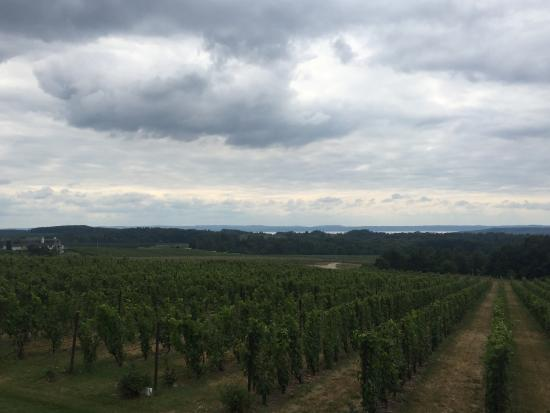 Traverse City Wine And Beer Tours: photo2.jpg