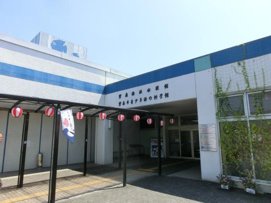 Hekinan Seaside Aquarium - Hekinan Youth Maritime Science Museum
