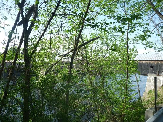 Cornish-Windsor Covered Bridge: Blick durch die Bäume
