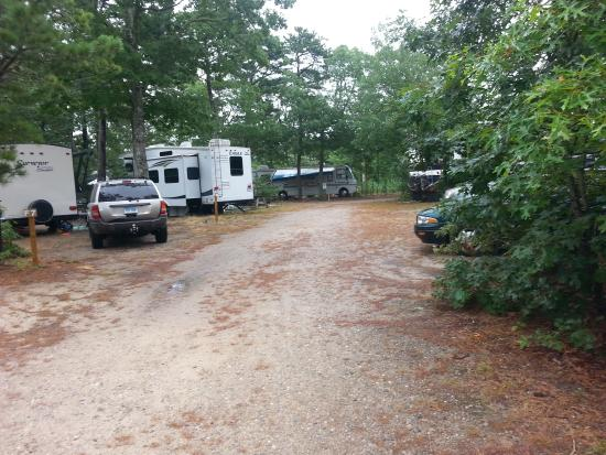 Atlantic Oaks Campground: Camp road