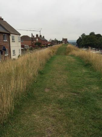 Wareham Saxon Wall Walk