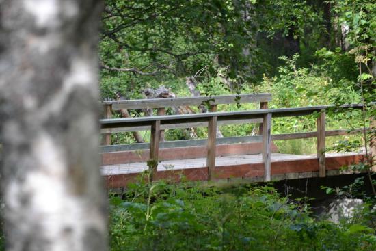 Alaska Creekside Cabins: Bridge you cross