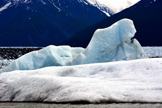 "Knik Glacier Day Tour: That ""otherworldly blue"" you go floating by."