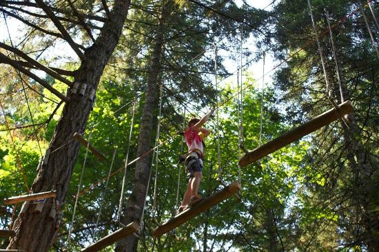 Zap Active Vacation and Adventure Tours: rope bridge