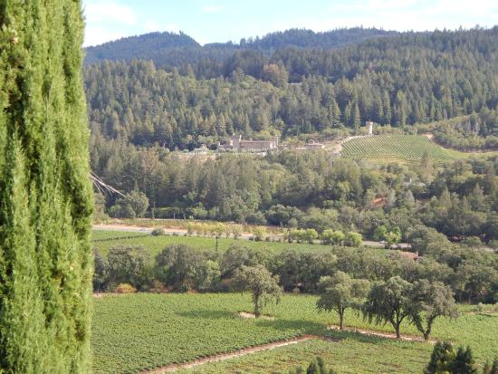Sterling Winery Tour Reviews