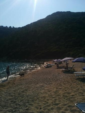 Roulis Hotel Corfu Messonghi Reviews Photos Amp Price