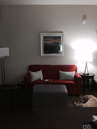 Hampton Inn & Suites Hutto