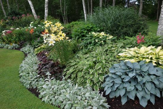 Lincolnville, ME: garden 2