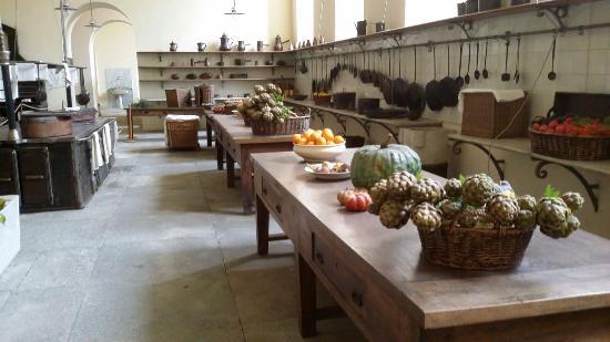 Le antiche cucine - Picture of Castello di Racconigi, Racconigi ...