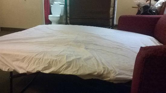 BEST WESTERN Georgetown Hotel & Suites: sofa cama aberto