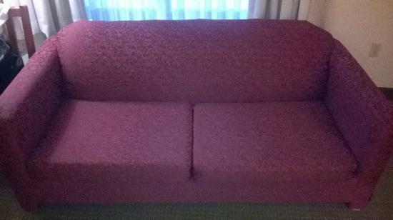 BEST WESTERN Georgetown Hotel & Suites: sofa cama fechado