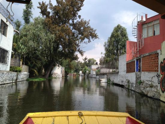 Trajineras Picture Of Floating Gardens Of Xochimilco Mexico City Tripadvisor