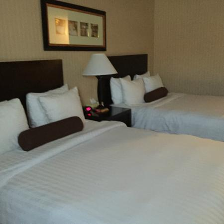 BEST WESTERN Markland Hotel: King beds in our room