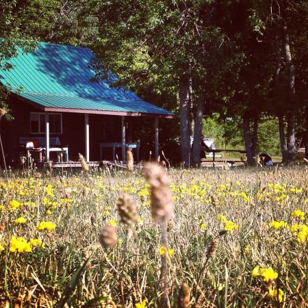 Lake Wolsey Cabins