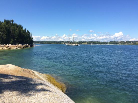 Deer Isle, ME: View from island we stopped at for lunch