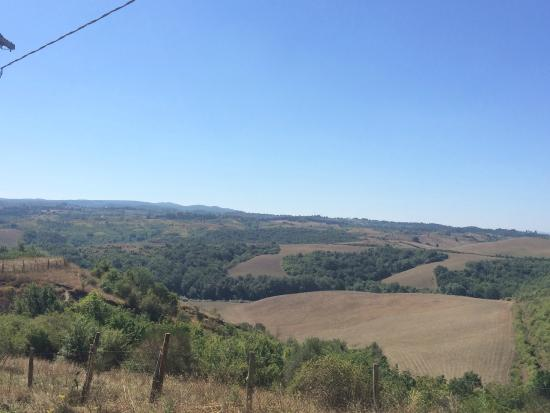 Fattoria Barbialla Nuova: the view walking down from the appartment