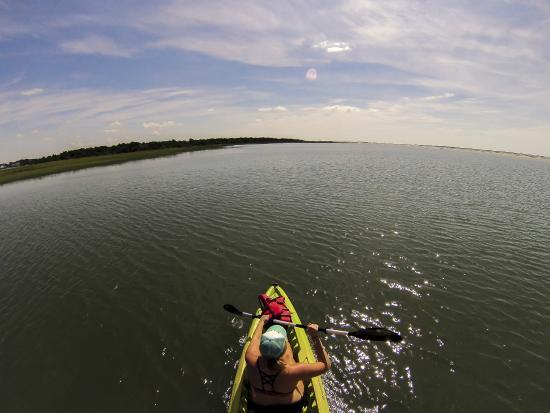 Beaufort Paddle: Bird Shoal