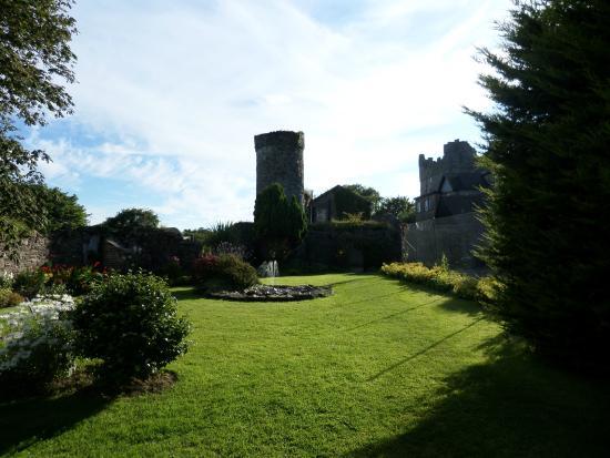 Drinagh, Ирландия: Grounds
