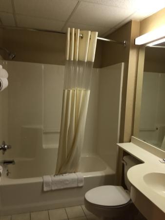 Microtel Inn & Suites by Wyndham Joplin : photo3.jpg