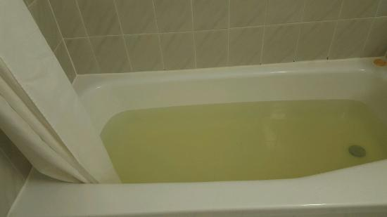 Plaza Hotel and Suites: Would you want to bathe in this water. DO NOT STAY HERE!!!