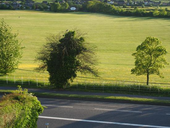 Sarum Heights: out side out bedroom window