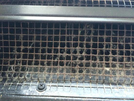 Clarion Hotel & Conference Center : AC Grate in room #219