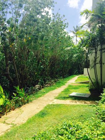 Barbados Amazing Vacation