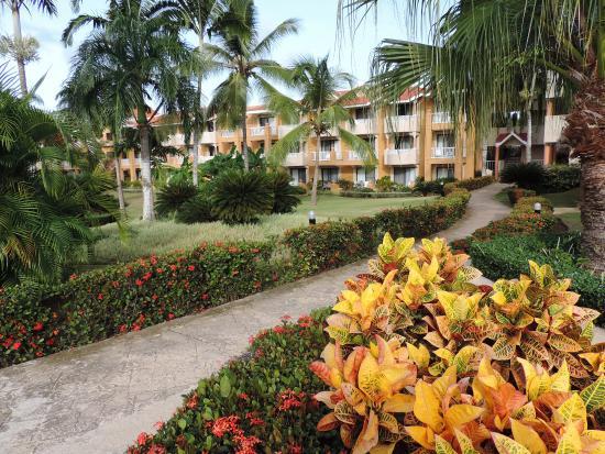 Foto de Viva Wyndham Dominicus Beach, Bayahíbe: jardines de ensueño ...