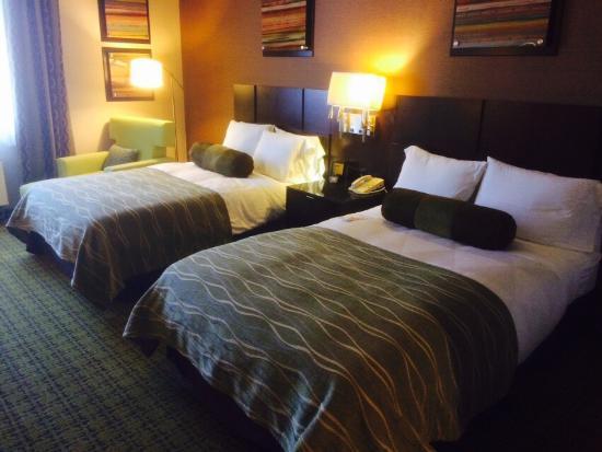 惠蒂爾雷迪森酒店照片