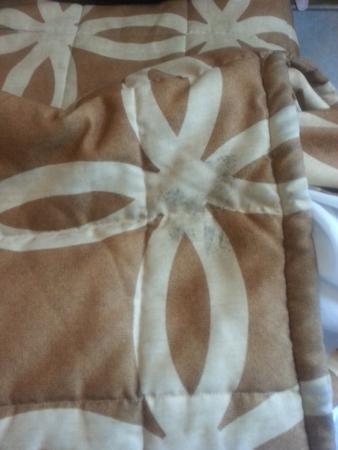 Sea Foam Motel: dirty bedspread