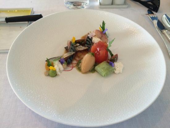 Hof van Cleve : Mackerel starter (tomato, cucumber, citrus sorbet)