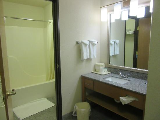Comfort Inn Birch Run: washroom