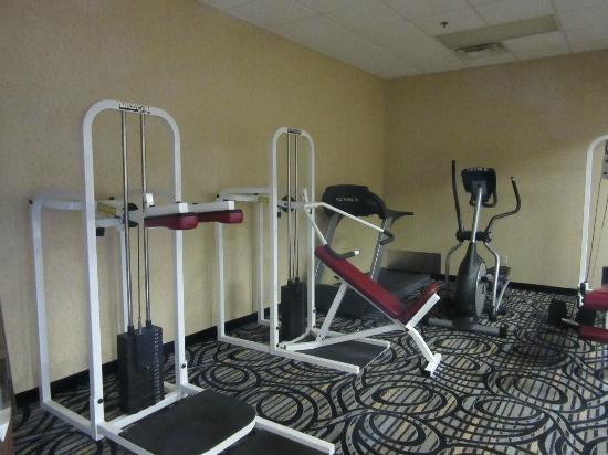 Comfort Inn Birch Run: exercise room