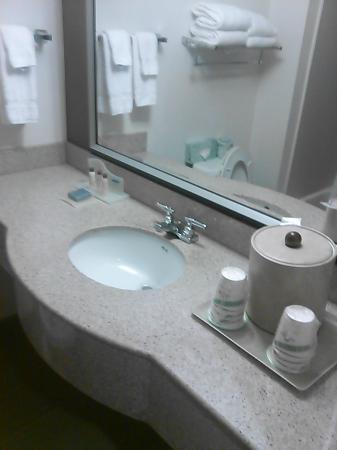 Wingate by Wyndham Raleigh Durham / Airport: Bathroom