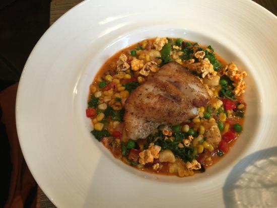 Grouper  - Picture of Hamptons, Sumter - TripAdvisor