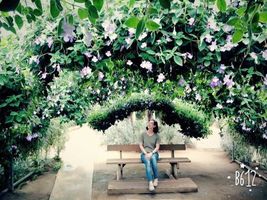 World Flower Botanical Garden