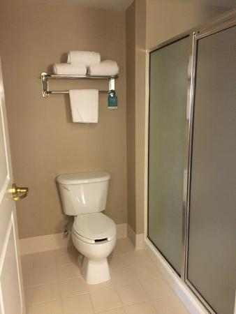 Homewood Suites by Hilton Manchester/Airport: Bathroom