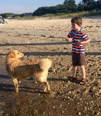 Bowen's by the Bays: Grandson throwing the ball