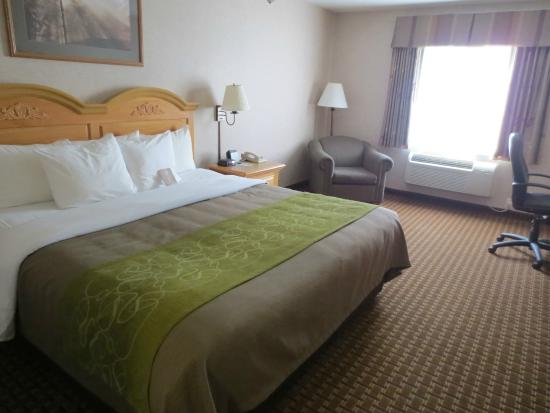 Fin mai 2015 picture of comfort inn suites custer for Comfort inn bedding