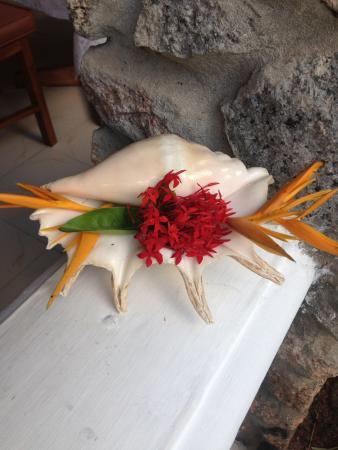 Villa Rafia Guesthouse : Un accueil chaleureux
