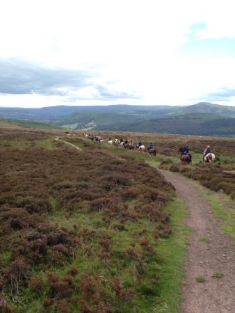 Coventry, UK: Hoofin-About Horse Riding Holidays