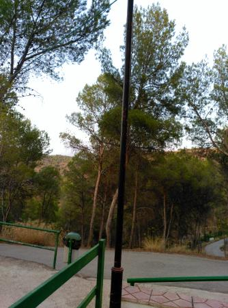 Balneario Hervideros de Cofrentes: Vista desde habitación hotel
