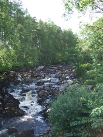 7stanes - Glentrool: River by the visitor centre