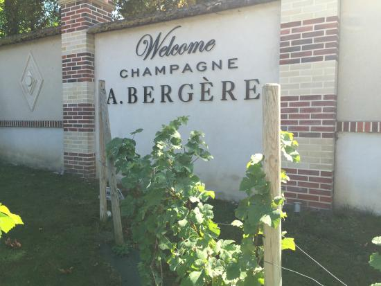 Champagne Andre Bergere : welcome