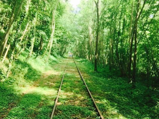 Rando Rail du pays de Lumbres : Bonne journée