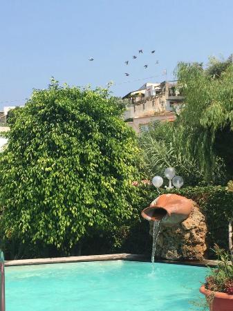 Hotel Galidon Terme & Village : piscina