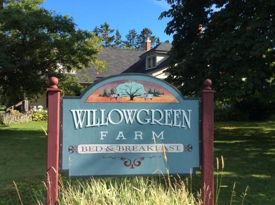 WillowGreen Farm: Willowgreen esterno