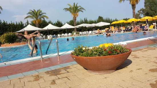 Piscina foto di rome marriott park hotel roma tripadvisor - Piscina eur roma ...