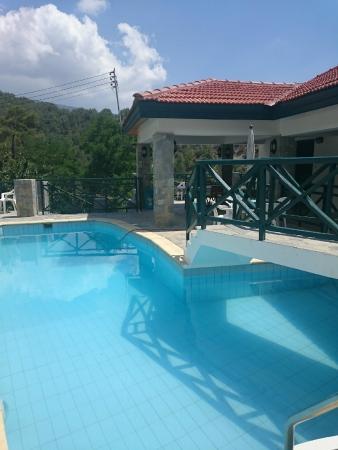 Themis House: pool