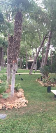 El Oasis Villas: Piscina y caminos de villa